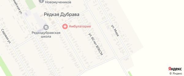 Улица 60 лет ВЛКСМ на карте села Редкой Дубравы с номерами домов