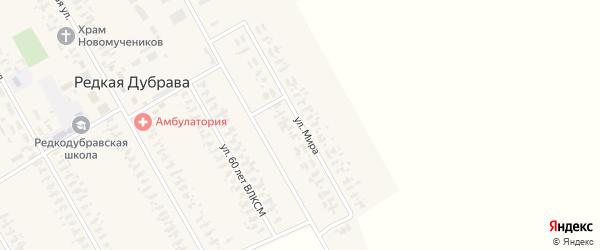 Улица Мира на карте села Редкой Дубравы с номерами домов