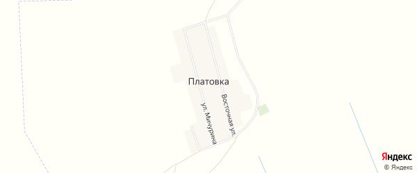 Карта села Платовки в Алтайском крае с улицами и номерами домов