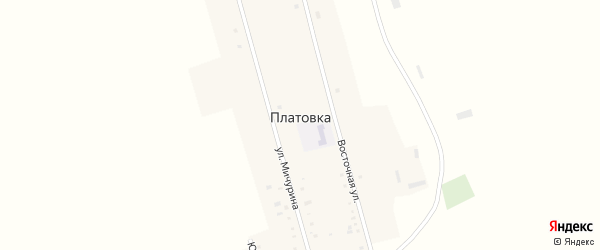 Восточная улица на карте села Платовки с номерами домов