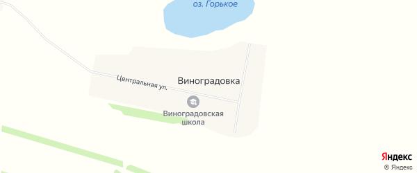 Карта села Виноградовки в Алтайском крае с улицами и номерами домов