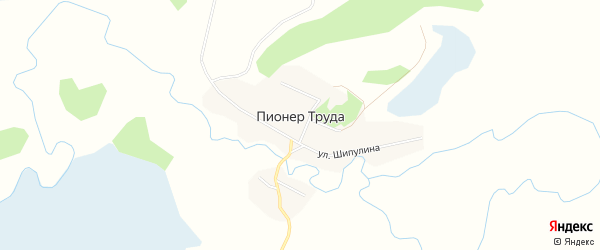 Карта поселка Пионера Труда в Алтайском крае с улицами и номерами домов