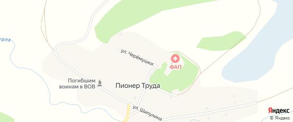 Улица Черемушки на карте поселка Пионера Труда с номерами домов