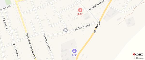 Улица Мичурина на карте села Ключи с номерами домов