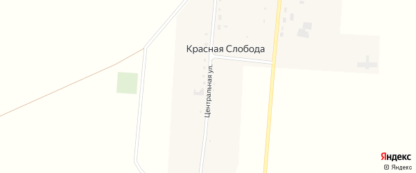 Центральная улица на карте села Красной Слободы с номерами домов