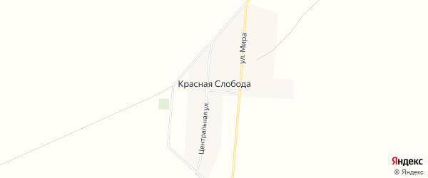 Карта села Красной Слободы в Алтайском крае с улицами и номерами домов