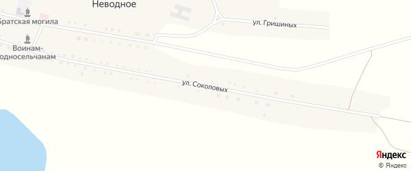 Улица Соколовых на карте Неводного села с номерами домов
