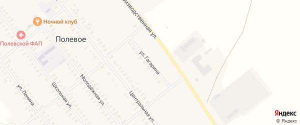 Улица Гагарина на карте Полевого села с номерами домов