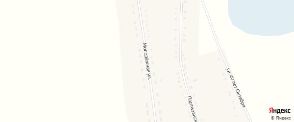 Молодежная улица на карте села Новополтавы с номерами домов