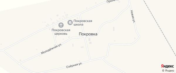 Центральная улица на карте села Покровки с номерами домов