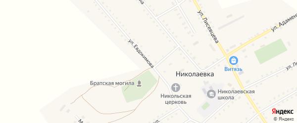 Улица Евдокимова на карте села Николаевки с номерами домов