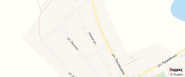 Новая улица на карте села Николаевки с номерами домов