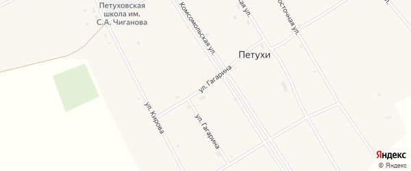 Улица Гагарина на карте села Петухи с номерами домов