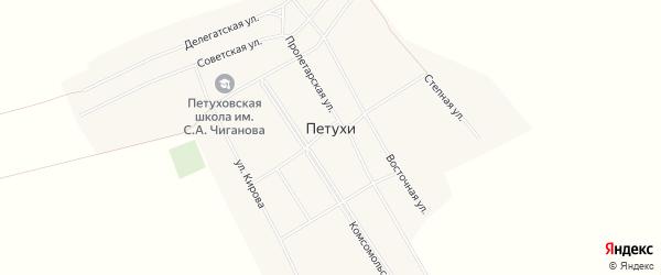 Карта села Петухи в Алтайском крае с улицами и номерами домов