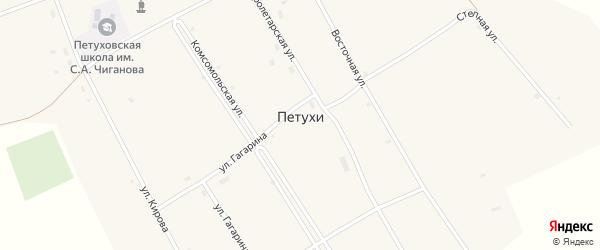 Молодежная улица на карте села Петухи с номерами домов