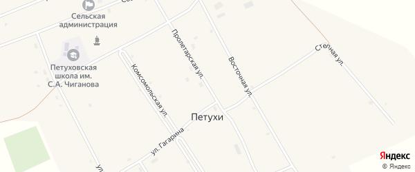 Пролетарская улица на карте села Петухи с номерами домов