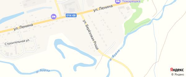Улица Березовая роща на карте села Хабаров с номерами домов