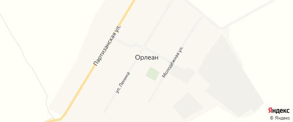 Карта села Орлеана в Алтайском крае с улицами и номерами домов