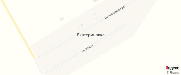 Центральная улица на карте села Екатериновки с номерами домов