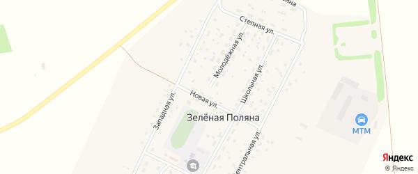 Молодежная улица на карте села Зеленой Поляны с номерами домов