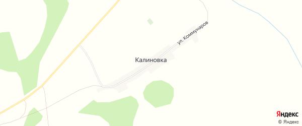 Карта поселка Калиновки в Алтайском крае с улицами и номерами домов