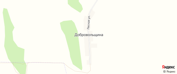 Карта поселка Добровольщина в Алтайском крае с улицами и номерами домов