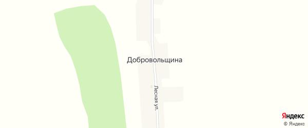 Лесная улица на карте поселка Добровольщина с номерами домов