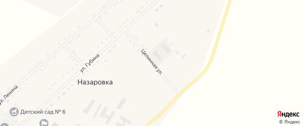 Целинная улица на карте села Назаровки с номерами домов