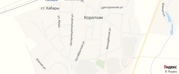 Карта села Коротояка в Алтайском крае с улицами и номерами домов