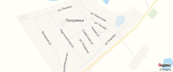 Карта села Полуямки в Алтайском крае с улицами и номерами домов