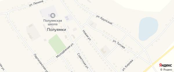 Новая улица на карте села Полуямки с номерами домов