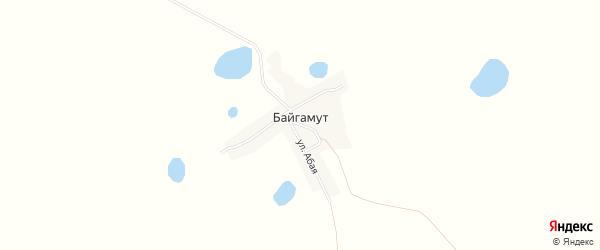 Карта поселка Байгамута в Алтайском крае с улицами и номерами домов