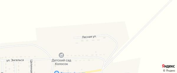 Лесная улица на карте Целинного поселка с номерами домов