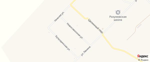 Новосовхозная улица на карте села Разумовки с номерами домов