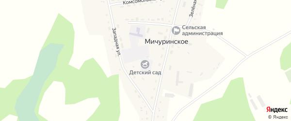 Комсомольская улица на карте Мичуринского села с номерами домов