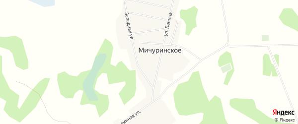 Карта Мичуринского села в Алтайском крае с улицами и номерами домов