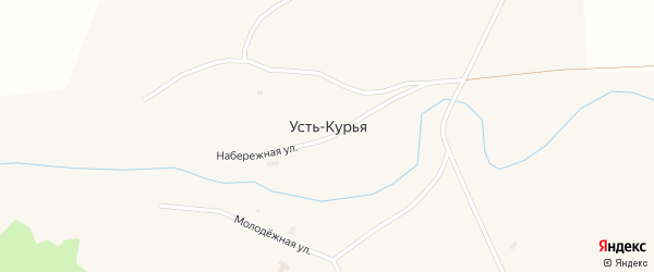 Центральная улица на карте поселка Усть-Курьи с номерами домов