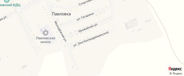 Улица З.Космодемьянской на карте села Павловки с номерами домов