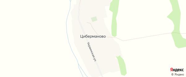 Карта поселка Циберманово в Алтайском крае с улицами и номерами домов