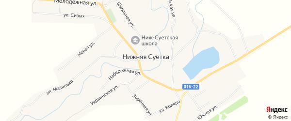 Карта села Нижней Суетки в Алтайском крае с улицами и номерами домов
