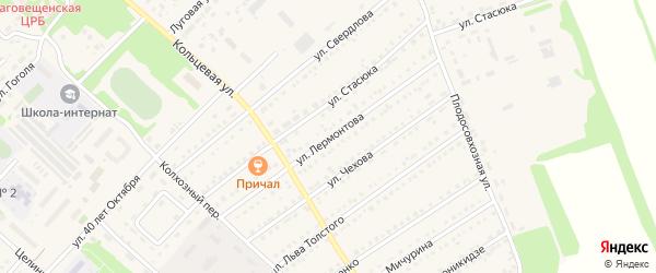 Улица Лермонтова на карте поселка Благовещенки с номерами домов