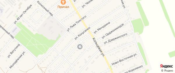 Улица Мичурина на карте поселка Благовещенки с номерами домов