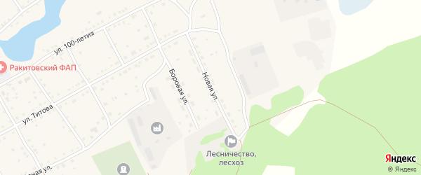 Новая улица на карте села Ракиты с номерами домов
