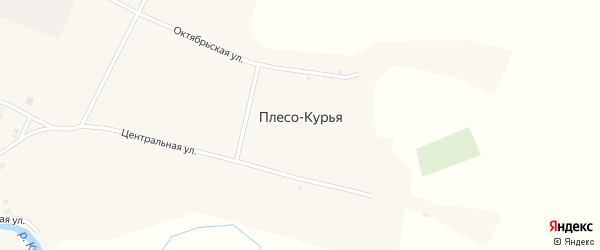 Зеленая улица на карте села Плеса-Курьи с номерами домов