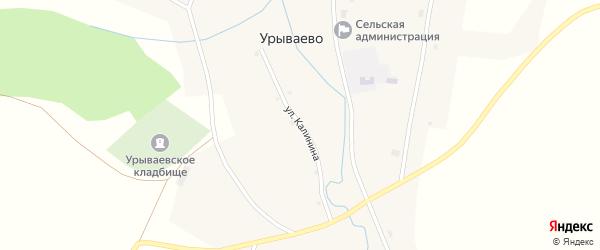 Улица Калинина на карте села Урываево с номерами домов