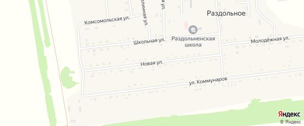 Новая улица на карте Раздольного села с номерами домов