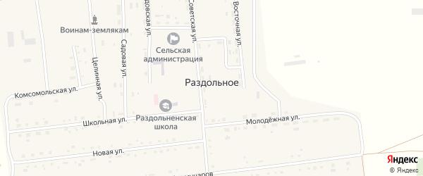 Молодежная улица на карте Раздольного села с номерами домов