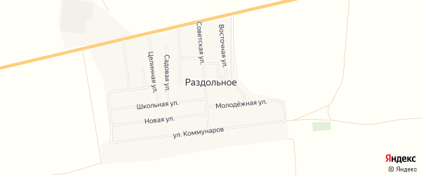 Карта Раздольного села в Алтайском крае с улицами и номерами домов
