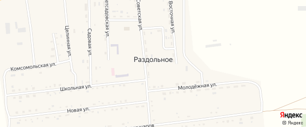 Восточная улица на карте Раздольного села с номерами домов
