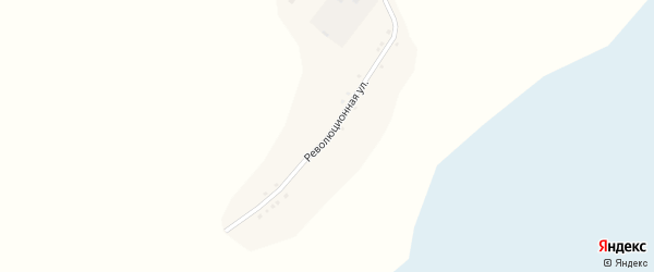 Революционная улица на карте села Шадрухи с номерами домов